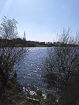 Townhill Loch with Pylon